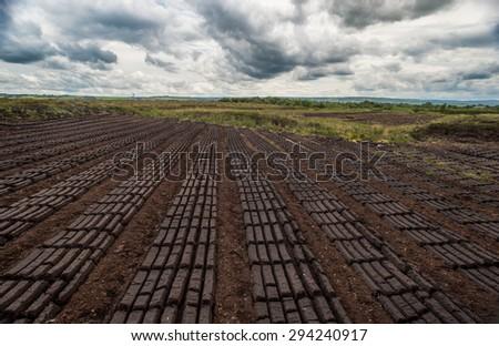 dark cloudy peat bog field landscape - stock photo