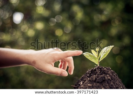 Dark color tone. Selective focus on Little seedling in black soil point by child finger. Earth day concept. - stock photo