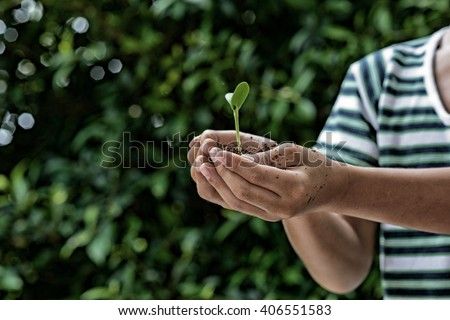 Dark colour tone of the selective focus on small kid hand holding young seedling plant in soile for growing. Earth day concept. - stock photo