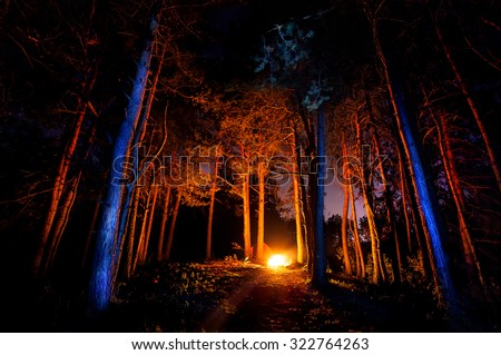 Dark forest with campfire at night - stock photo