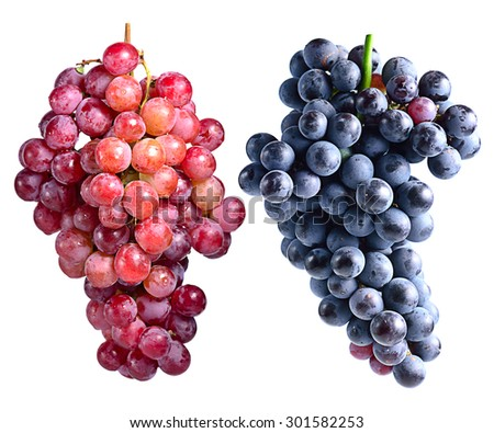 Dark grapes and red grapes isolated on white background - stock photo