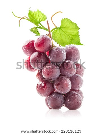 Dark grapes Isolated on white background - stock photo