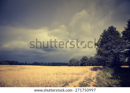 Dark Landscape with Field and Moody Sky. HDR Cloudscape. Toned Photo with Copy Space. - stock photo