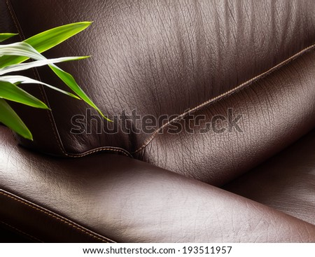 Dark leather sofa with plant - stock photo