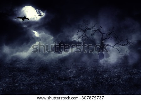 Dark mysterious night field and moon in the sky. - stock photo