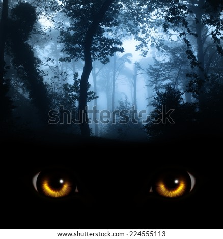 Dark series - a look from darkness - stock photo