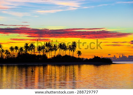 Dark silhouettes of palm trees and amazing cloudy sky at sunset - stock photo