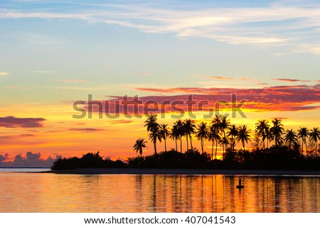 Dark silhouettes of palm trees and amazing cloudy sky on sunset at tropical island in Indian Ocean - stock photo