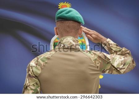 Dark-skinned soldier in hat facing US state flag series - Kansas - stock photo