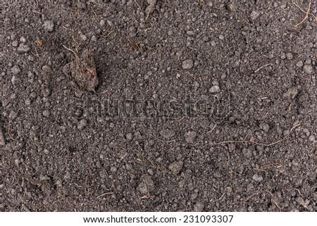 Dark soil texture background - stock photo