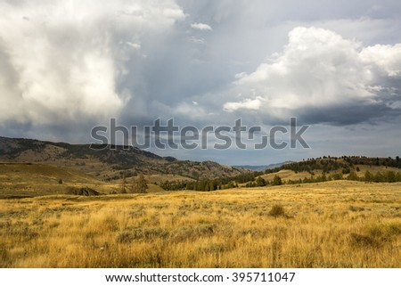 Dark storm clouds over golden grasses of the Lamar Valley in Yellowstone National Park, Wyoming. - stock photo