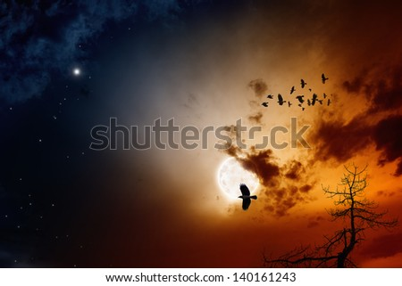 Dark sunset sky with full moon, stars, flock of flying ravens, crows. Elements of this image furnished by NASA - stock photo
