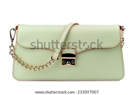 Dark tea green clutch isolated on white background. - stock photo