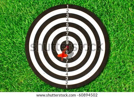 Dartboard on green grass (Darts Hit Target) - stock photo