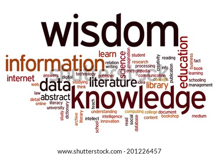 Data information knowledge wisdomconcept word cloud background - stock photo