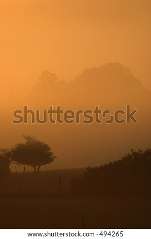 Dawn - stock photo