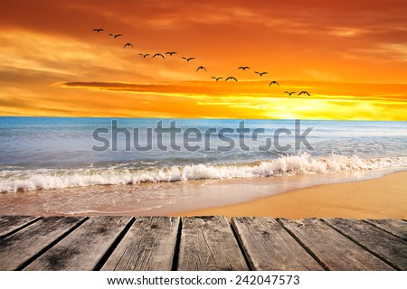 dawn beach - stock photo