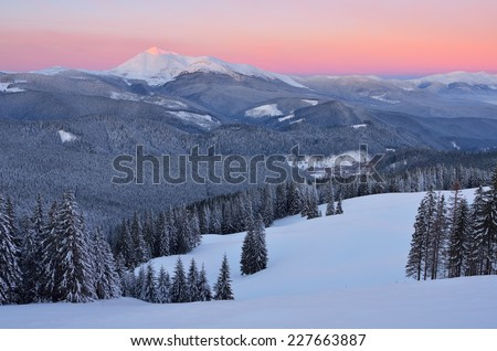 Dawn in mountains. Winter landscape with snow covered forest - stock photo