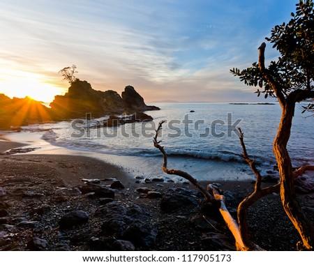Dawn Light on Leigh Beach North Island New Zeland - stock photo