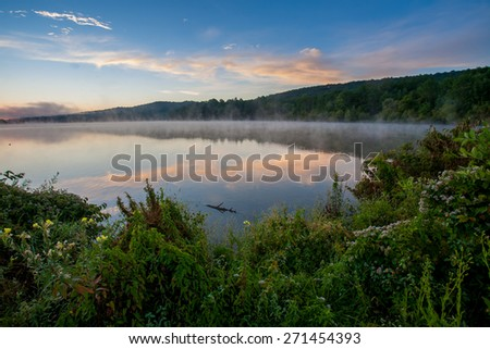 Dawn light over lake with foliage in foreground - stock photo