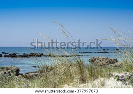 Day at the Sea - stock photo