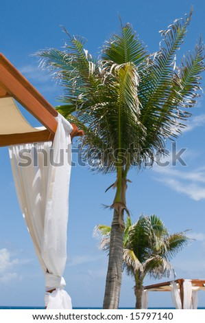 Daybeds at luxury tropical oceanfront spa, under palm trees - stock photo