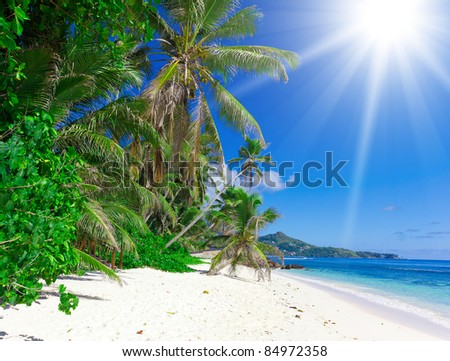 Daylight Heat Sunny Day - stock photo