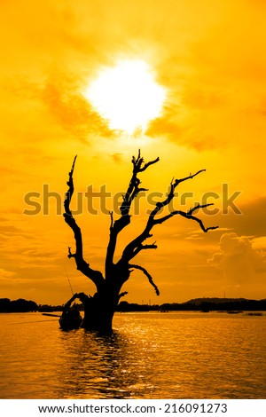 Dead tree and a boat in Mandalay lake,Myanmar - stock photo