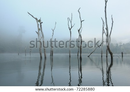 Dead trees and the mist in the lake of Khao Sok, the South of Thaialand - stock photo