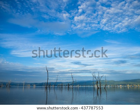 Dead trees and the mist in the lake of Srinakarin Dam Kanchanaburi thailand - stock photo