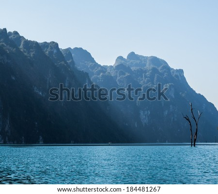 Dead trees in the water from the reservoir - stock photo