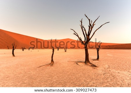 Dead Vlei in the southern part of the Namib Desert, in the Namib-Naukluft National Park of Namibia. - stock photo
