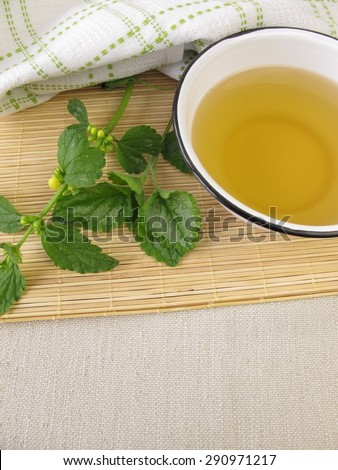 Deadnettle bath - stock photo