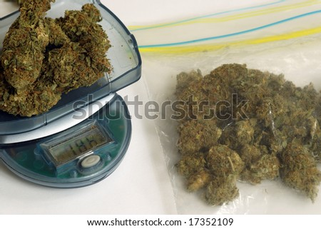 Dealer weighing marijuana to sell. - stock photo