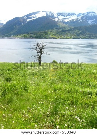 Death and life - stock photo