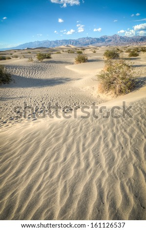 Death valley, desert natural sand dunes near devils korn field - stock photo