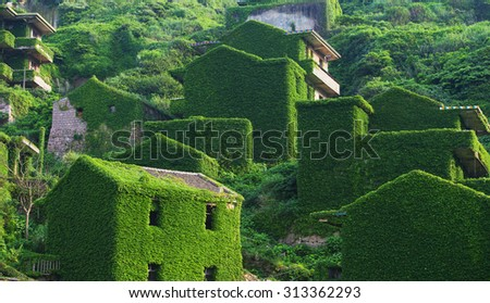 Decline of fishery resources, China zhejiang shengsi shengshan Island fishermen have relocated and become a ghost village, the abandoned houses covered with green plants, - stock photo