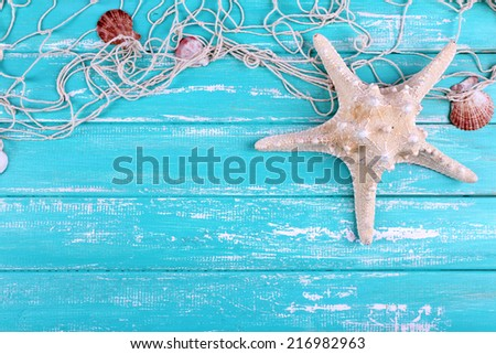 Decor of seashells close-up on blue wooden table - stock photo