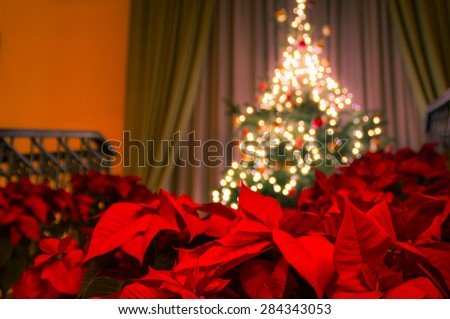 Decorated christmas tree with christmas lights on the stairs and poinsettia plants in front - stock photo