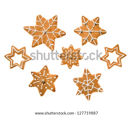 Decorated homemade gingerbread cookies - stock photo
