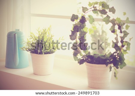 Decorated plant and watering can with vintage filter style - stock photo