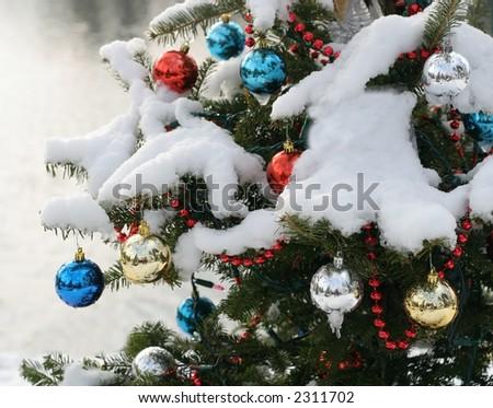 decorated xmas tree outside - stock photo
