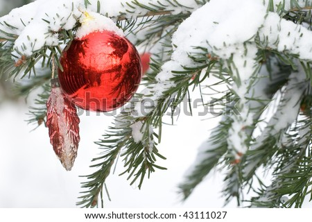 decoration in a christmas tree with snow - stock photo