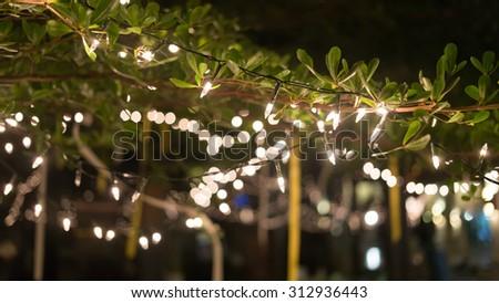 decoration light christmas celebration hanging on tree, abstract image blurred defocused background - stock photo