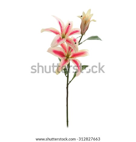 Decorative artificial pink lily isolated on a white - stock photo