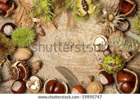 Decorative autumn border with chestnuts, walnuts, hazelnuts, acorns and leaves - stock photo