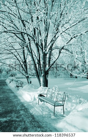 decorative bench in winter park - stock photo