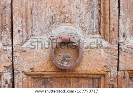 Decorative bronze lion head door knob handle - stock photo