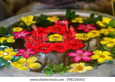 decorative colorful exotic flowers in the water for Spa-salon - stock photo