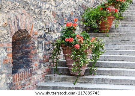 decorative flower pots on stairs along an old stone wall - stock photo